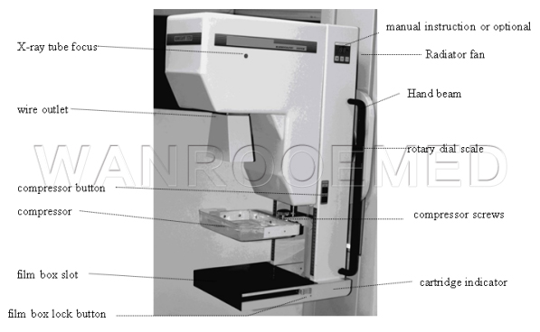 X-Ray System,Mammography System,Digital Mammography,X-Ray,Digital X-Ray